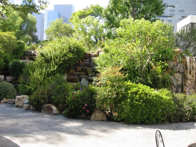 Los Angeles Japanese Garden: Japanese Tea Gardens In Littly Tokyo, Los Angeles